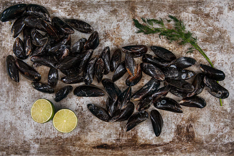 färska musslor pris